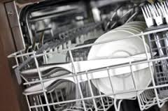 Dishwasher Technician Rahway